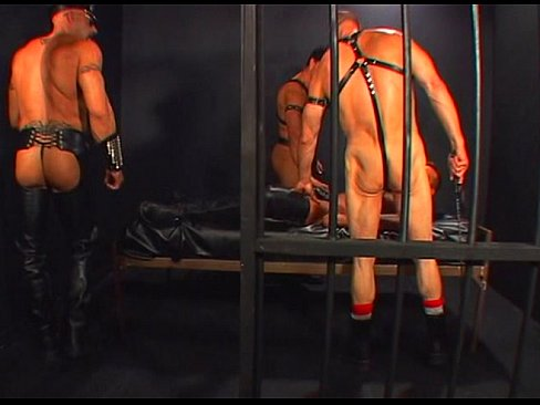 Pacific Sun Leather Bears scene 3