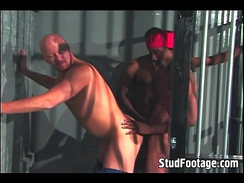 gay college cocks
