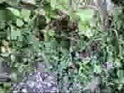 http://img-l3.xvideos.com/videos/thumbs/9e/c2/52/9ec2523bab039b884a6626d6f65b3267/9ec2523bab039b884a6626d6f65b3267.1.jpg